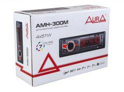 AMH 300